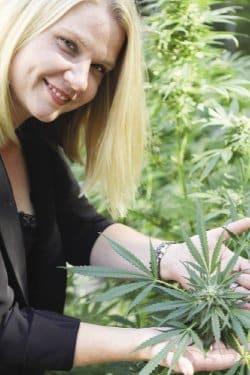 Caroline's Cannabis bucks the big marijuana industry trend